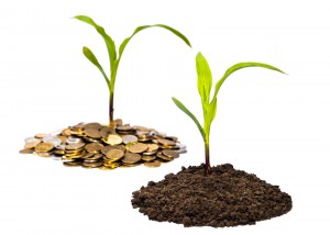 farm-seed-soil-grow-wealth-money-coin-300x214
