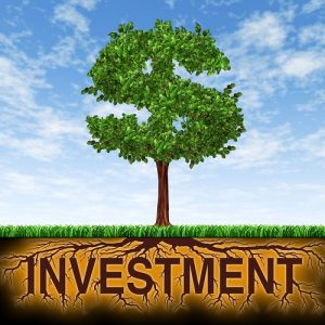 How to Invest in High Growth Properties