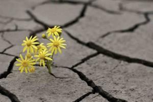 Adversity Overcome Stress Growth Inspiration Motivation 300x201